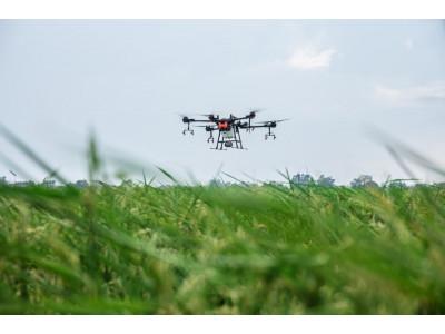 Использование дронов в сельском хозяйстве
